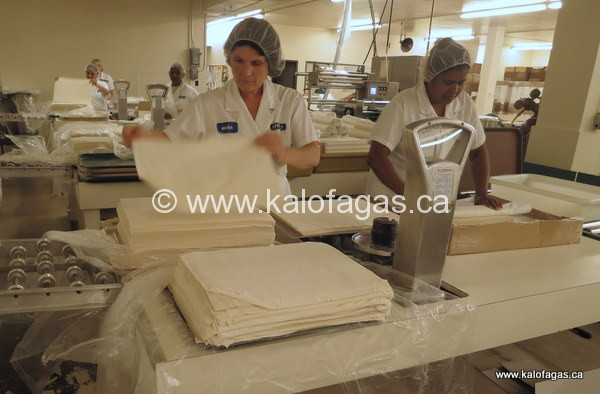 Folding and packing phyllo dough at Krinos facility in Toronto